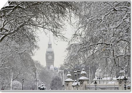 Snow covers tree branches in front of the Houses of Parliament, in central London February 2, 2009. Heavy snow brought much of London's transport to a halt on Monday with airport runways forced to close and all bus and many train services suspended