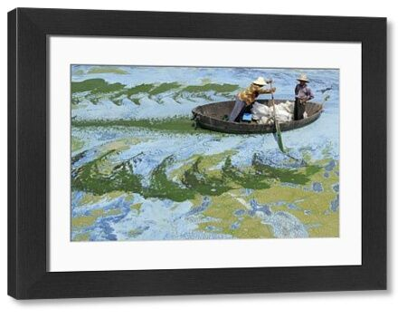 Fishermen row a boat in the algae-filled Chaohu Lake in Hefei, Anhui province, June 19, 2009. The country has invested 51 billion yuan ($7.4 billion) towards the construction of 2,712 projects for the treatment of eight rivers and lakes including Huaihe River