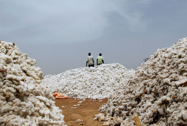 Farmers work at a cotton market in Soungalodaga village near Bobo-Dioulasso