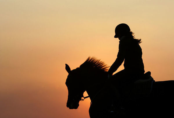 A horsewoman is silhouetted as she trains her horse during a ride at sunset at a riding club in Istanbul January 8, 2005