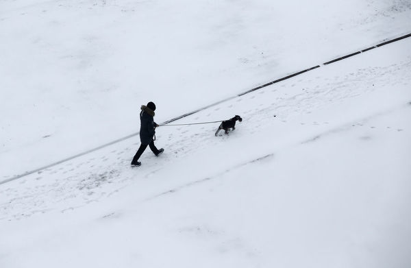 Man walks with a dog after snowfall in Minsk