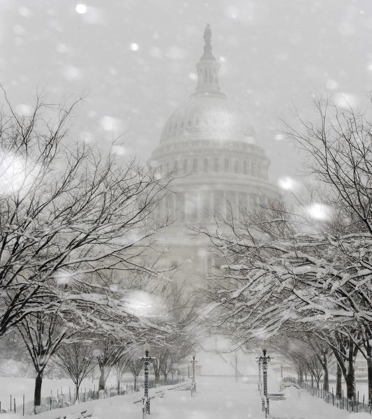 Snow falls on the grounds of the U.S. Capitol as a blizzard blankets Washington, February 6, 2010