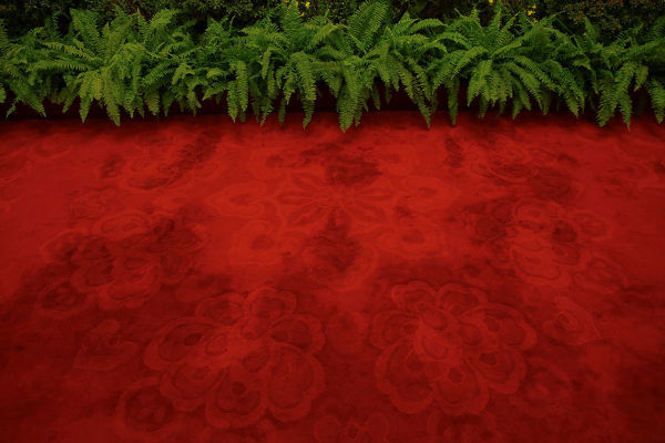 Plants are placed by a red carpet inside the Great Hall of the People where sessions of the National People's Congress (NPC) and the Chinese People's Political Consultative Conference (CPPCC) are taking place, in Beijing, China March 2, 2016